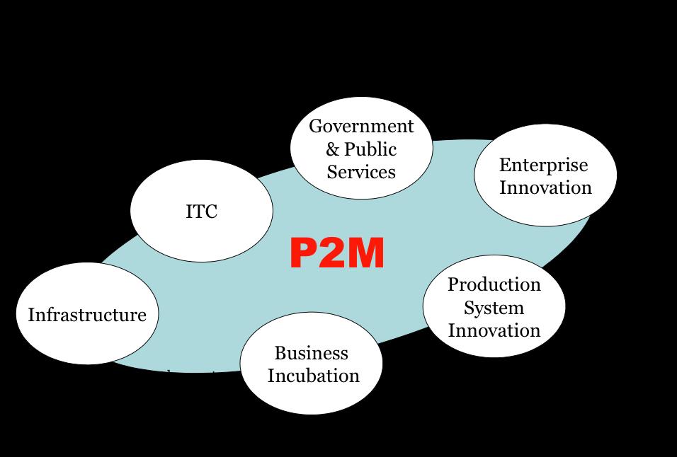 Структура методологии P2M